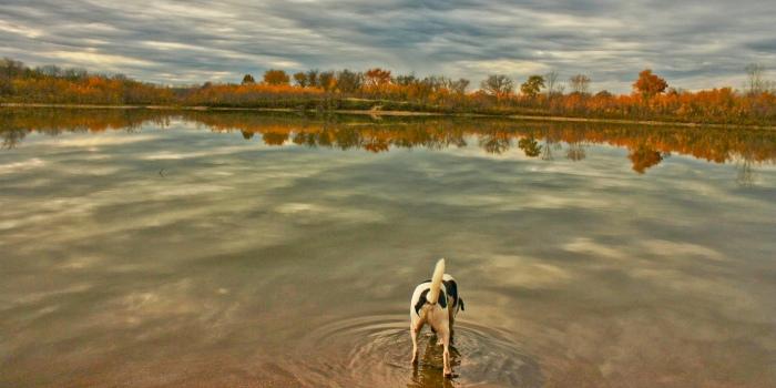 Racoon Park in Des Moines, Iowa