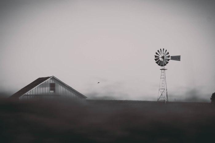 Kansas, Lamb_Jeanette -43 (24)