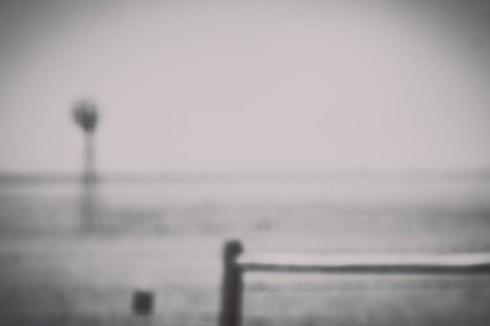 Nebraska_Lamb_Jeanette -1 (47)